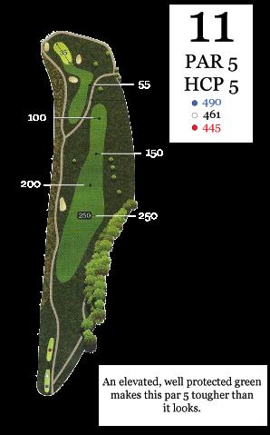 hole11_yardage