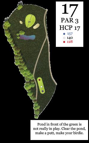 hole17_yardage